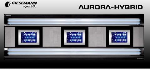 AURORA HYBRID 4 x 54 Watt + 3 x 85W LED 1200 mm