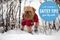 Cold Weather Safety Tips your Dog Needs to Know