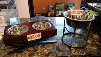 Why Get an Elevated Diner For Your Dog?