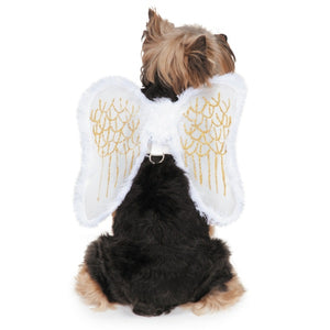 Zack & Zoey Angel Wing Harness Pet Costume Medium - Paw Naturals
