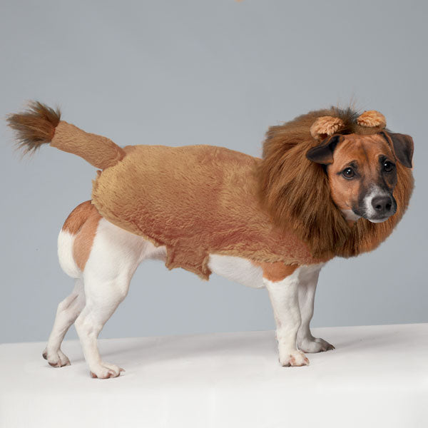 Zack & Zoey Fuzzy Lion Pet Costume