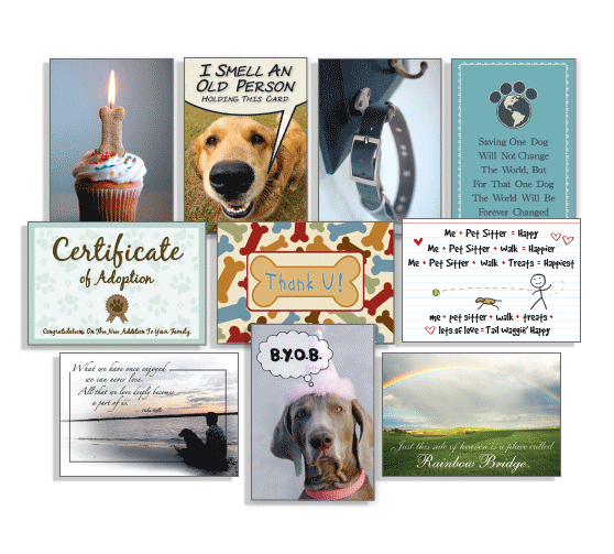Dog Speak U Feed Me Pet Sitter Thank You Card