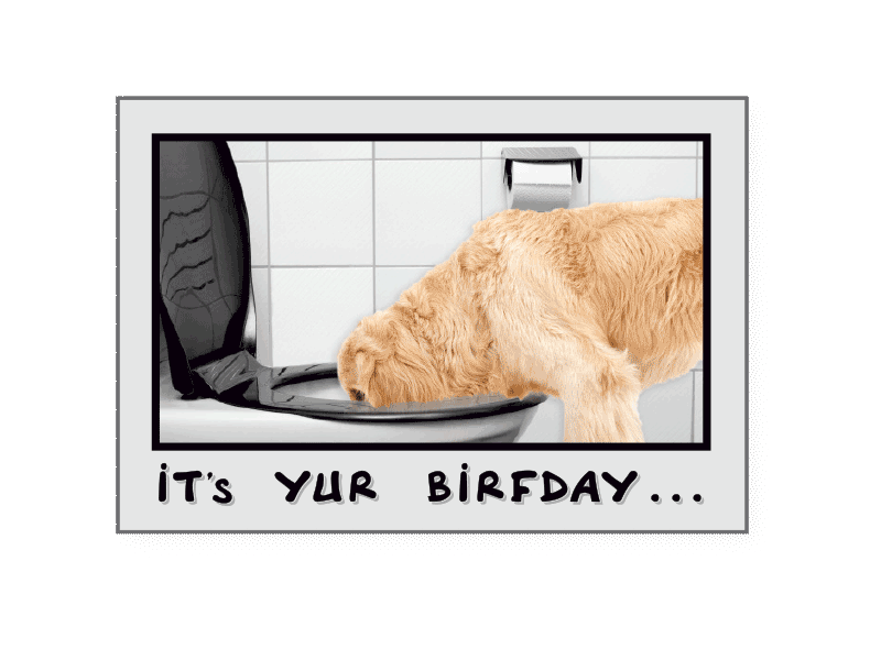 Dog Speak Birthday Card Drink Responzibly!