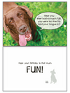 Dog Speak So Much Fun Birthday Card - Paw Naturals