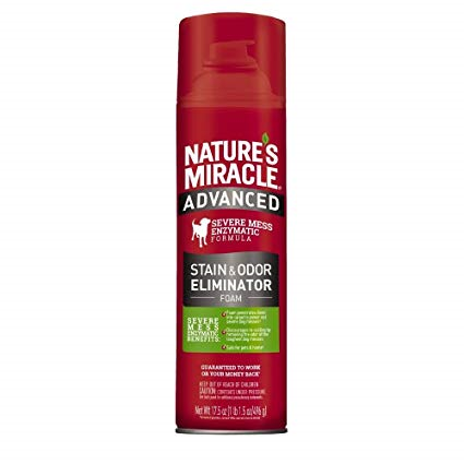 Nature's Miracle Advanced Dog Stain And Odor Remover Foam 17.5oz