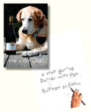 Dog Speak Like A Fine Wine Birthday Card