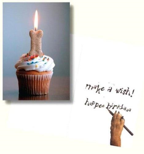 Dog Speak Make A Wish Happee Birfrdaaa Card