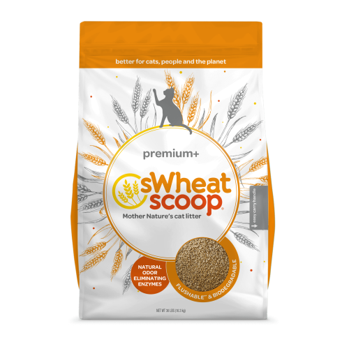 Swheat Scoop Premium + Cat Litter 10LB