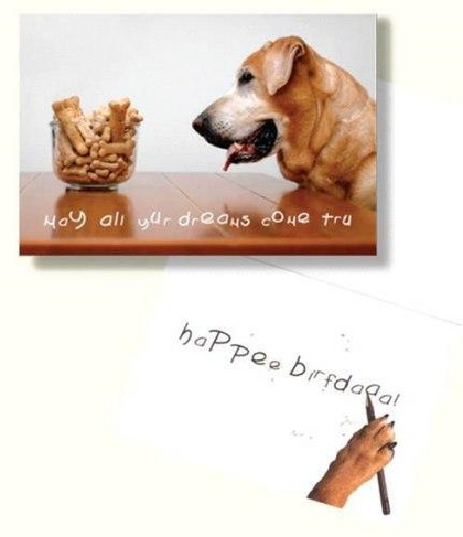 Dog Speak May All Your Dreams Come True Birthday Card - Paw Naturals