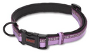 Halti Collar Purple Small