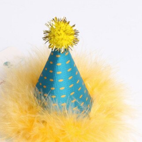 Paw Naturals Birthday Party Hat With Maribou Trim For Dogs & Cats - Green/Yellow - Paw Naturals