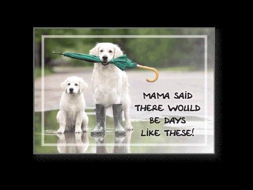 Dog Speak Cope Card Mama Said...