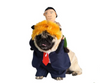 Sparky & Co Yellow-Haired President with Russian Rider Dog Costume