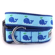 The Worthy Dog Squirt Collar & Lead Collection