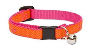 Lupine Sunset Club Dog Collar 914