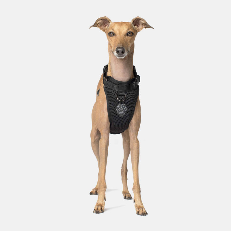 Canada Pooch Everything Harness Black