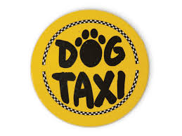 Dog Speak Dog Taxi Car Coaster