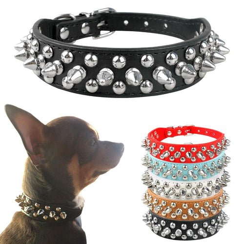 Small Dogs Studded Leather Collar