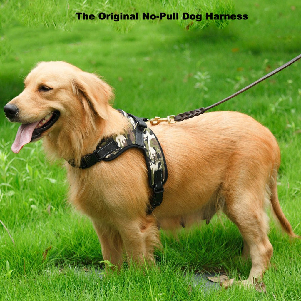 Original No-Pull Dog Harness