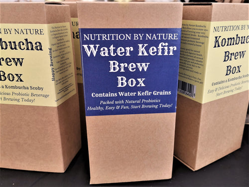 Water Kefir Brew Box - Nutrition by Nature