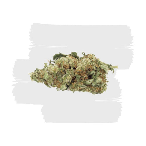 BLUEBERRY (AA) - The Cannabis Dispensary