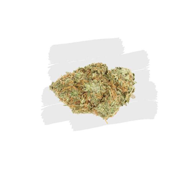 CHEESE (AA) - The Cannabis Dispensary