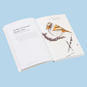 Field Guide to Dumb Birds of North America pb
