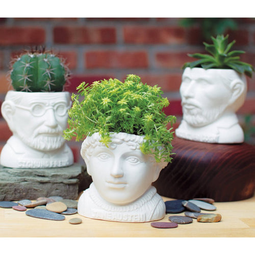 Fertile Mind Planter