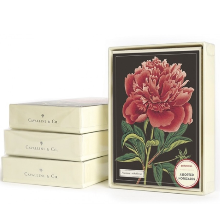 Botanical Boxed Note Cards