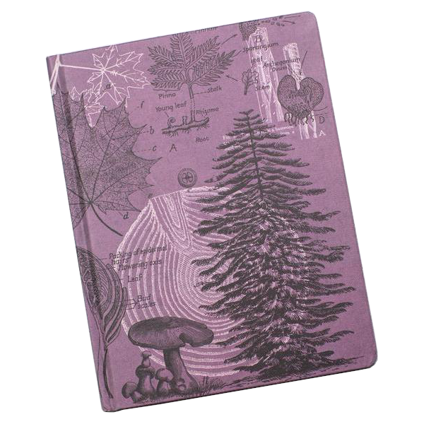 Forest at Dusk Hardcover Notebook