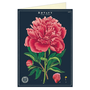Botany Series Greeting Card