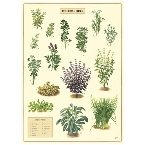 Kitchen Herbs Vintage Flat Wrap