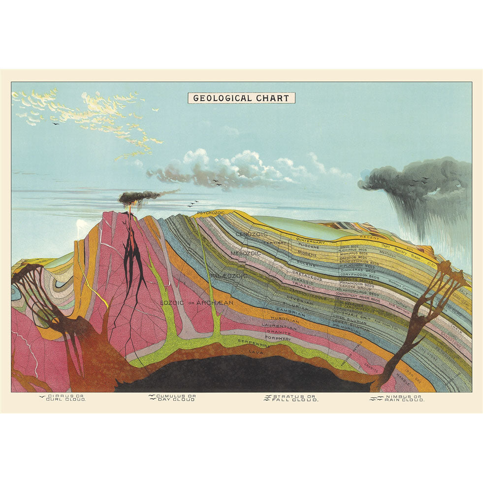 Geological Chart Vintage Flat Wrap