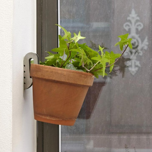 Floating Plant Hangers Set of 3