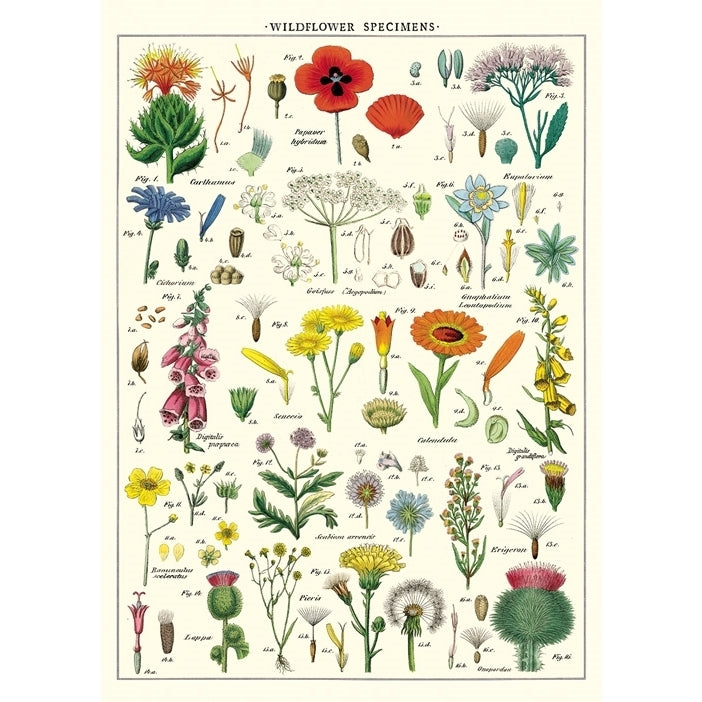 Wildflowers Vintage Flat Wrap