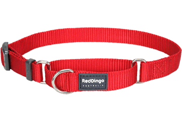 Martingale - Red Dingo Martingale Half Check Collar - Red (4 Sizes)