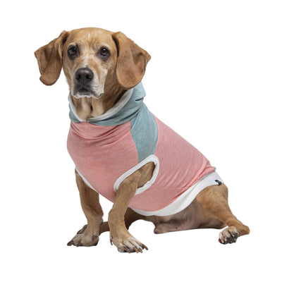 Dog T-Shirts - Long Dog Clothing Dog T-Shirt (Pink) - Dogs With Environmental Allergies