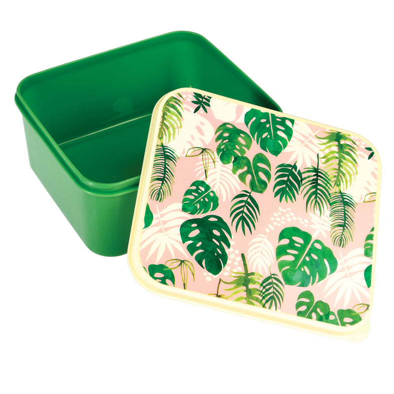 Lunch box - Tropical palm