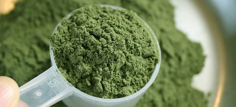 All you Need to Know about Green Supplement