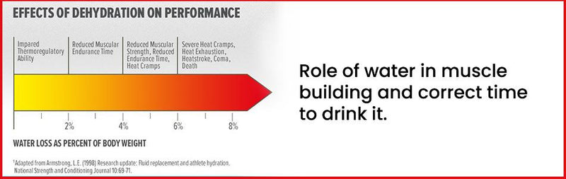 Hydration for Bodybuilders - Role of water in muscle building and correct time to drink it
