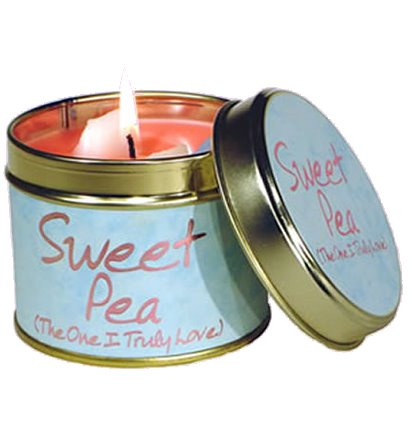 Lily Flame Sweetpea Candle Tin Candle Tin Lily Flame