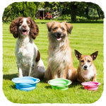 Collapsible travel dog food and water bowls