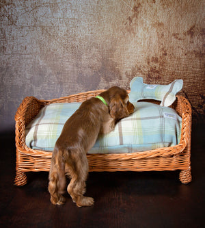 Luxury Wicker Dog Settee with Washable Pillow Dog Bed