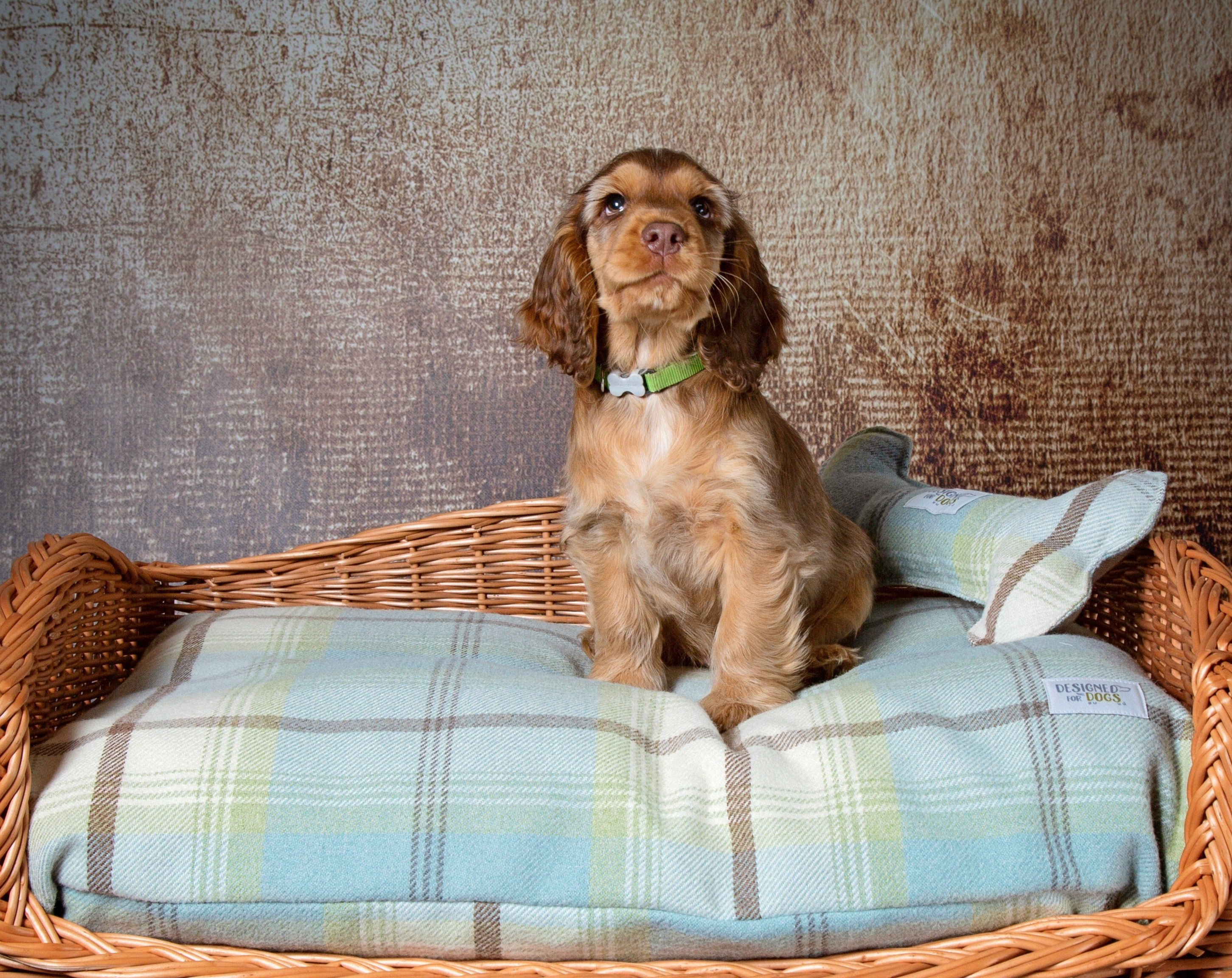 Duck Egg Tartan Pillow Dog Bed