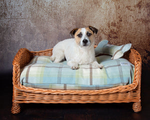 Luxury Wicker Dog Settee with Washable Tartan Pillow Dog Bed