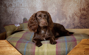 High Sided Rustic Wooden Dog Bed Pistachio Tartan