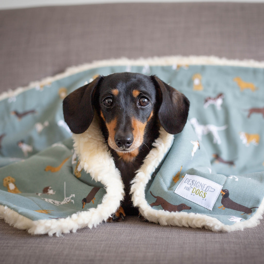 Sophie Allport Designs Soft & Cosy Double-Sided Blankets