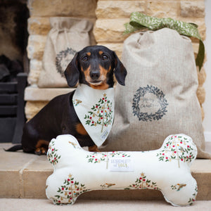 Dog Toy Gift Set