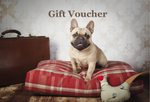 Designed for Dogs Gift Voucher