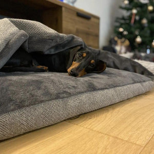 Pewter Tweed Doggy Den Bed